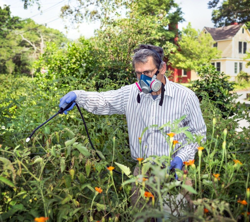 Man using insecticide
