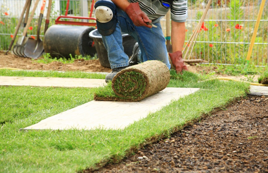 landscaping process
