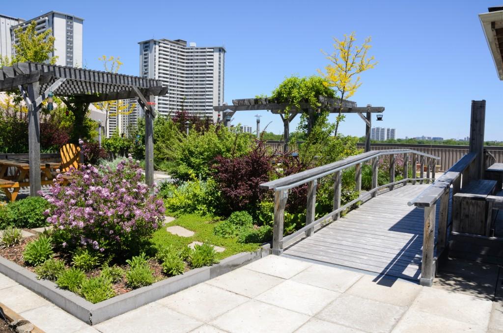 Rooftop garden landscaped